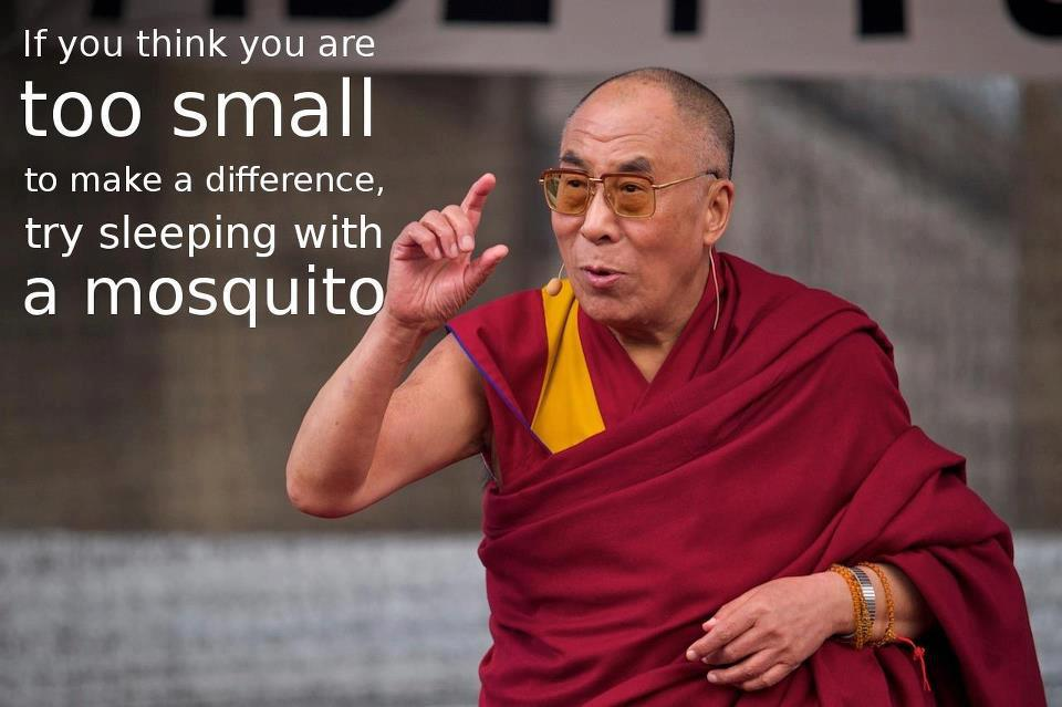dalai-lama-if-you-think-you-are-too-small-to-make-a-difference-js27yZ-quote